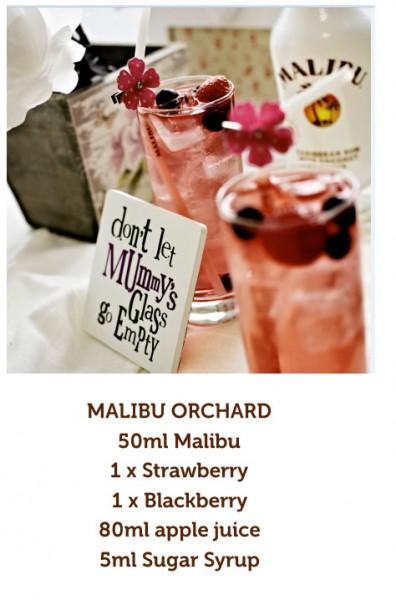 Malibu-1