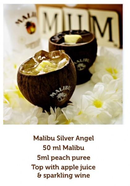 Malibu-3